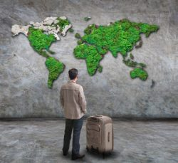 what is an expat? Archives - Expat Nest e-counselling